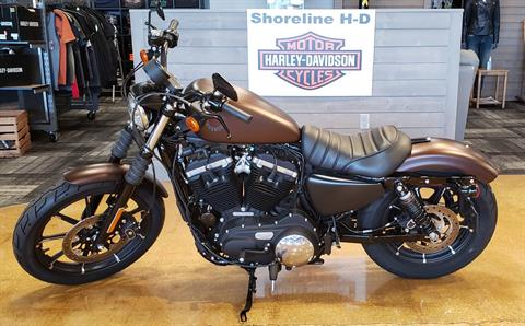2019 Harley-Davidson IRON 883 in West Long Branch, New Jersey - Photo 2
