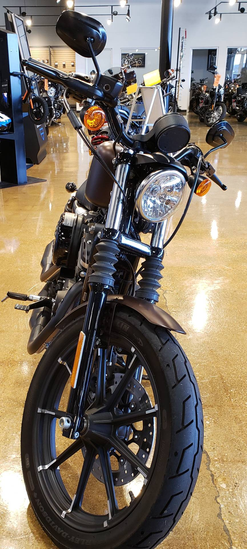 2019 Harley-Davidson IRON 883 in West Long Branch, New Jersey - Photo 4