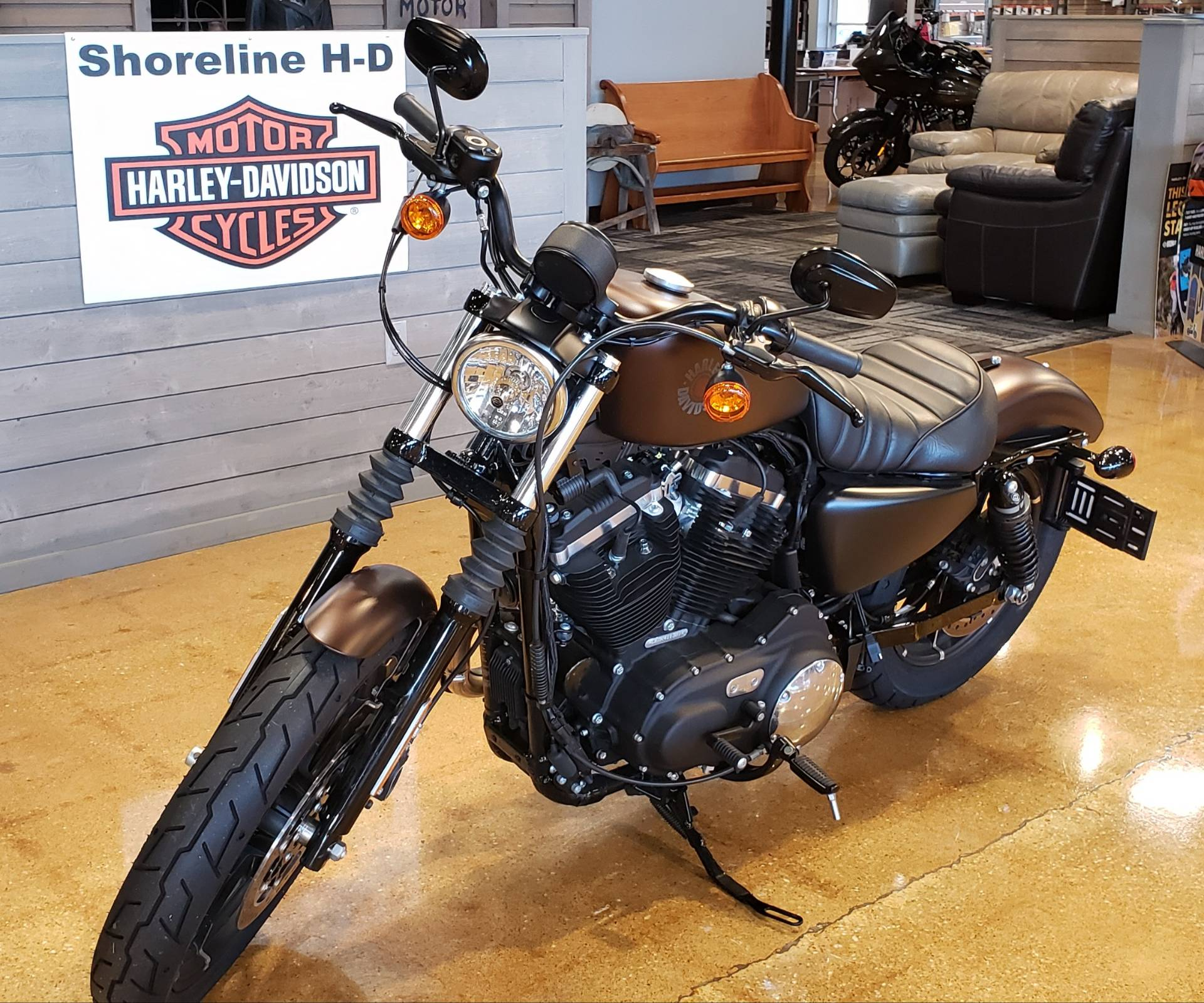 2019 Harley-Davidson IRON 883 in West Long Branch, New Jersey - Photo 5