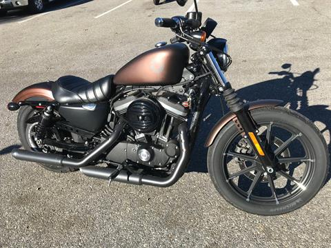 2019 Harley-Davidson IRON 883 in Lakewood, New Jersey - Photo 1