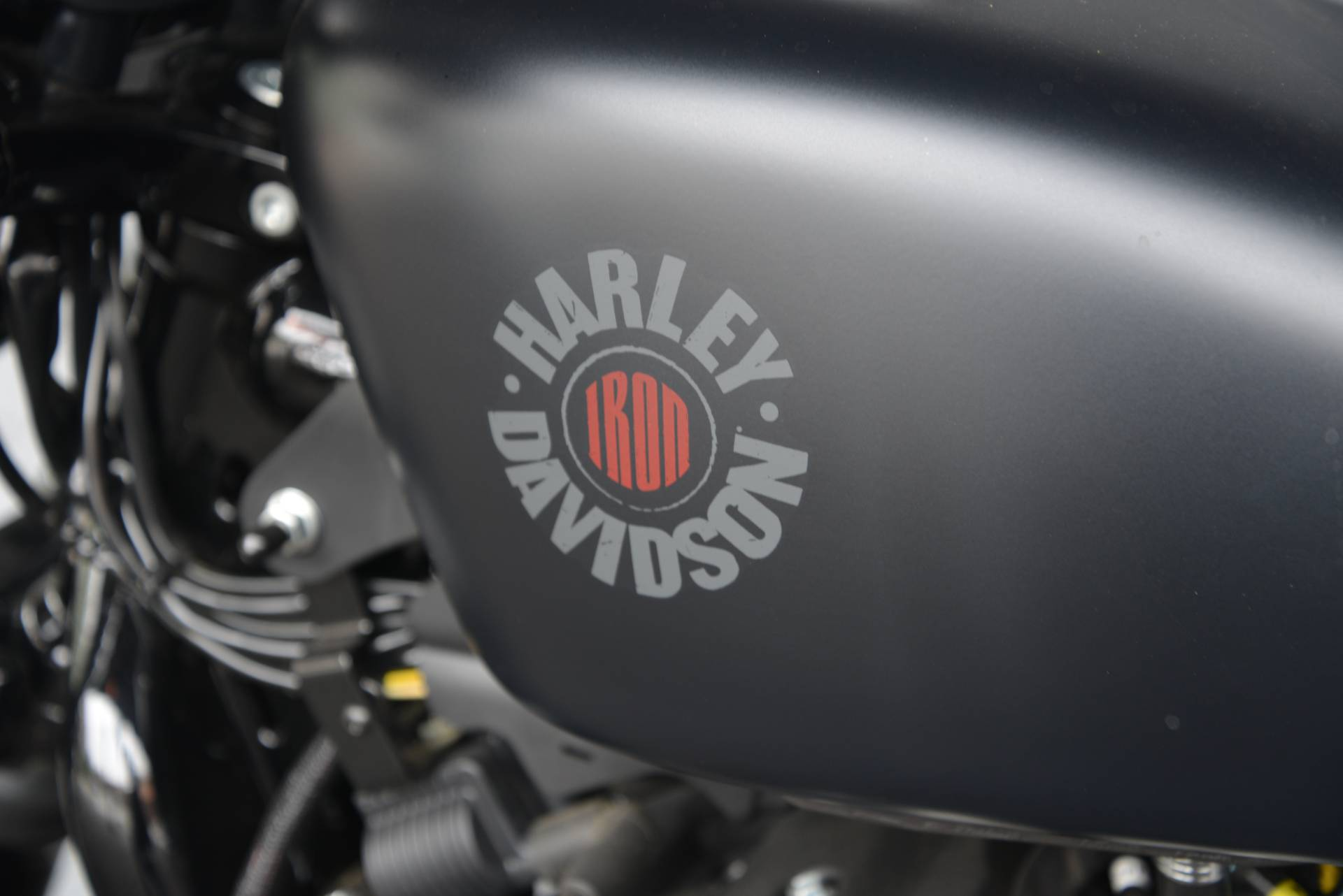 2019 Harley-Davidson IRON 883 in Lakewood, New Jersey - Photo 14