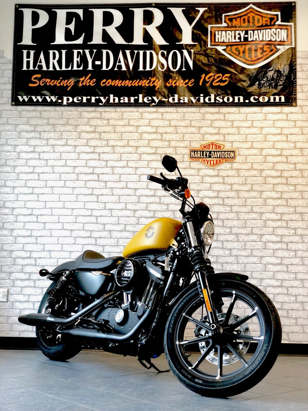 2019 Harley-Davidson Iron 883™ in Portage, Michigan - Photo 15