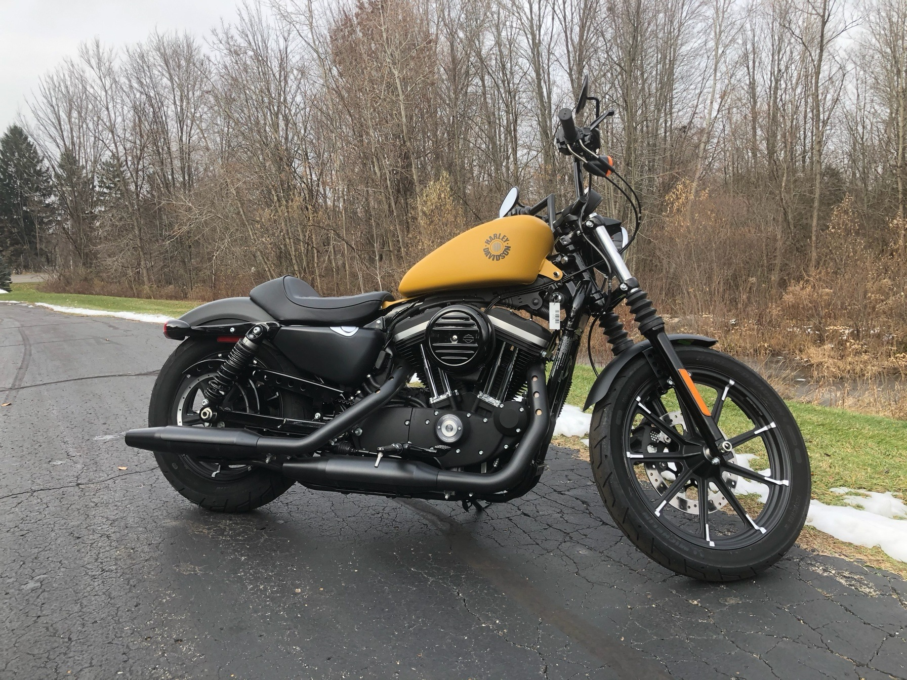 2019 Harley-Davidson Iron 883™ in Portage, Michigan - Photo 9