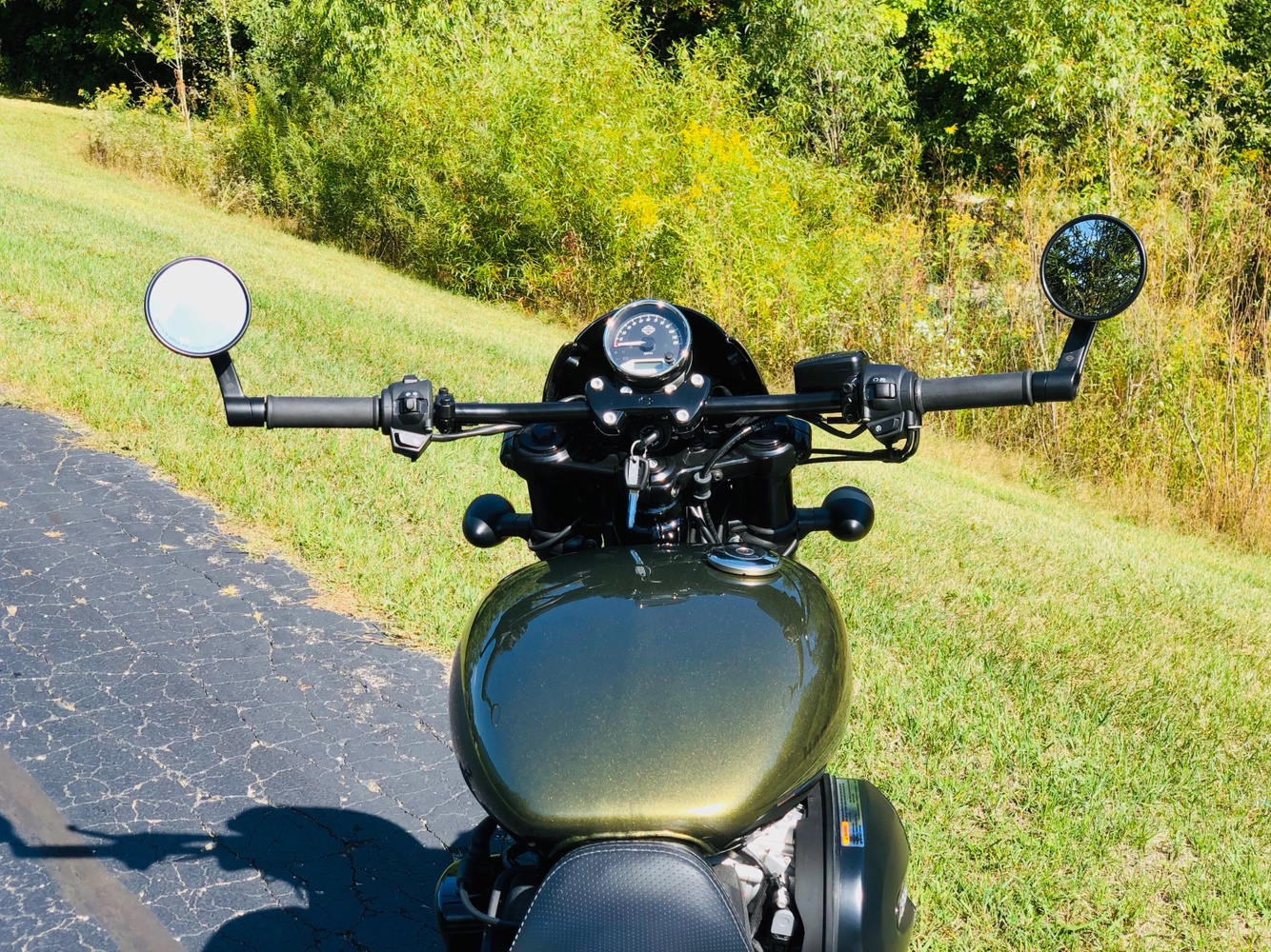 2017 Harley-Davidson Street Rod® in Portage, Michigan - Photo 13