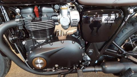 2017 Triumph T120 BLACK in Saint Charles, Illinois
