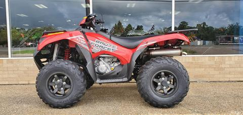 2020 Kawasaki BRUTE FORCE 750 in Gonzales, Louisiana