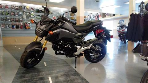 2018 Honda Grom in Watseka, Illinois