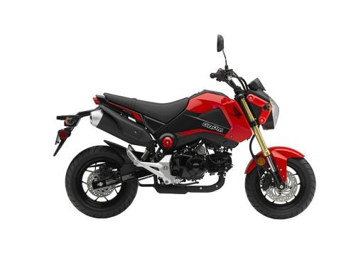 2015 Honda Grom® in Fontana, California