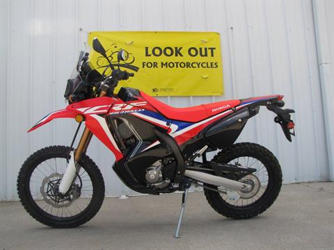 2019 Honda CRF250L Rally in Ottawa, Ohio - Photo 1