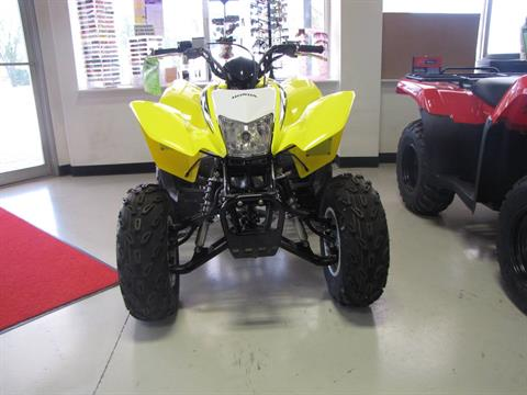 2018 Honda TRX250X in Ottawa, Ohio - Photo 3