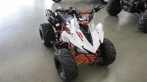 2020 Kayo Predator 125 in Wichita Falls, Texas - Photo 1