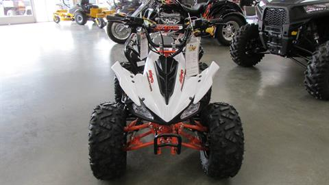 2020 Kayo Predator 125 in Wichita Falls, Texas - Photo 2