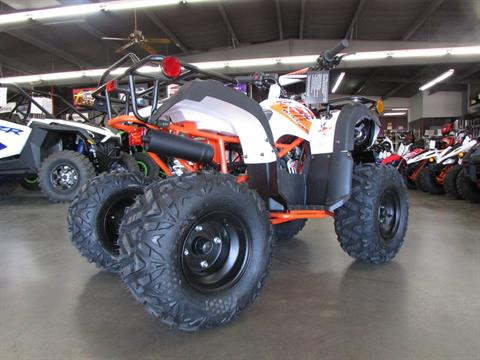 2020 Kayo Bull 125 in Wichita Falls, Texas - Photo 2