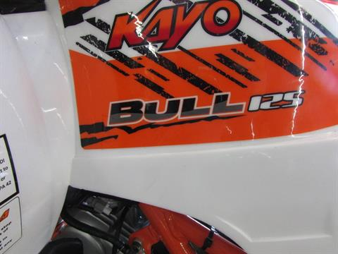 2020 Kayo Bull 125 in Wichita Falls, Texas - Photo 4