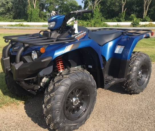 2019 Yamaha Kodiak 450 EPS SE for sale 17726