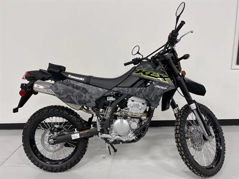 2021 Kawasaki KLX 300 in Brilliant, Ohio - Photo 11