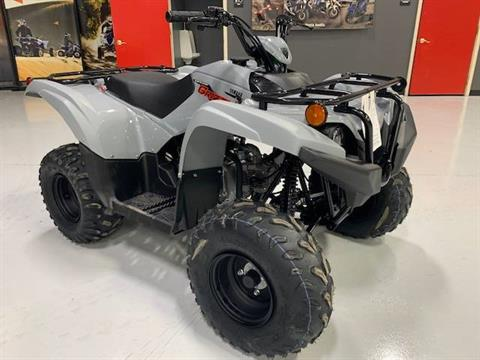 2021 Yamaha Grizzly 90 in Brilliant, Ohio - Photo 6