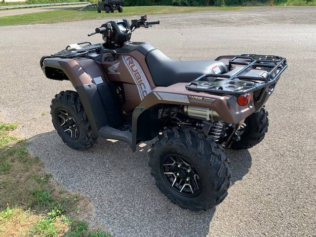 2021 Honda FourTrax Foreman Rubicon 4x4 Automatic DCT EPS Deluxe in Brilliant, Ohio - Photo 9