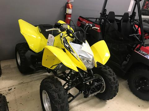 2018 Honda TRX250X in Corona, California
