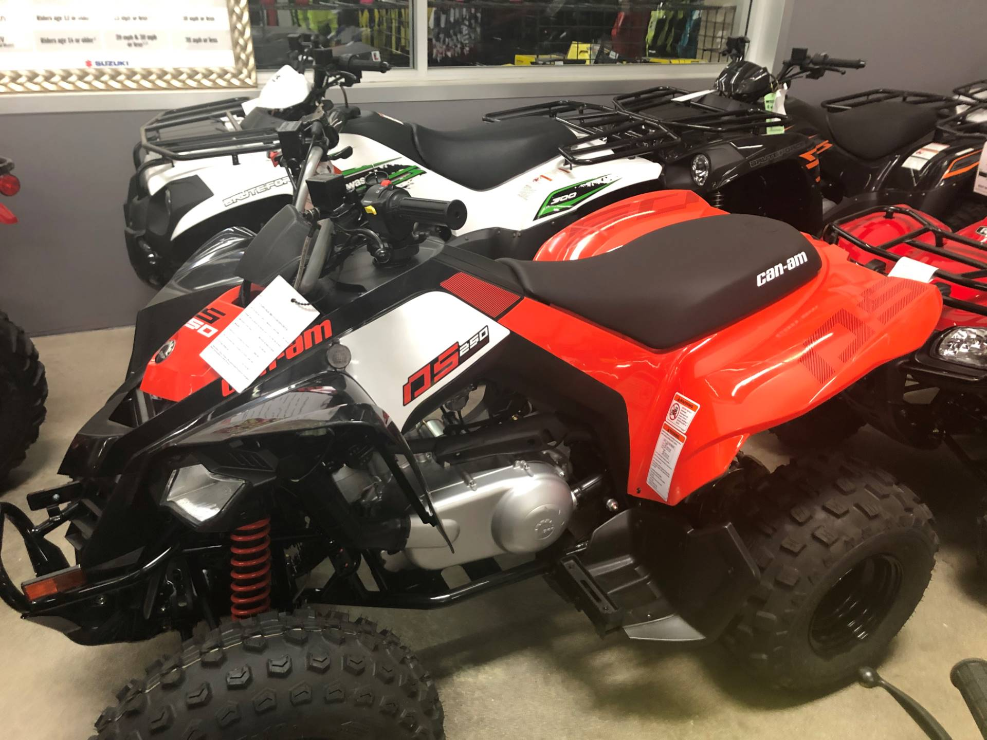 2020 Can-Am DS 250 in Corona, California - Photo 1