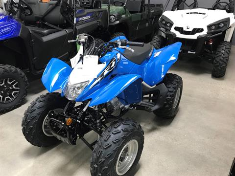2019 Honda TRX250X in Corona, California