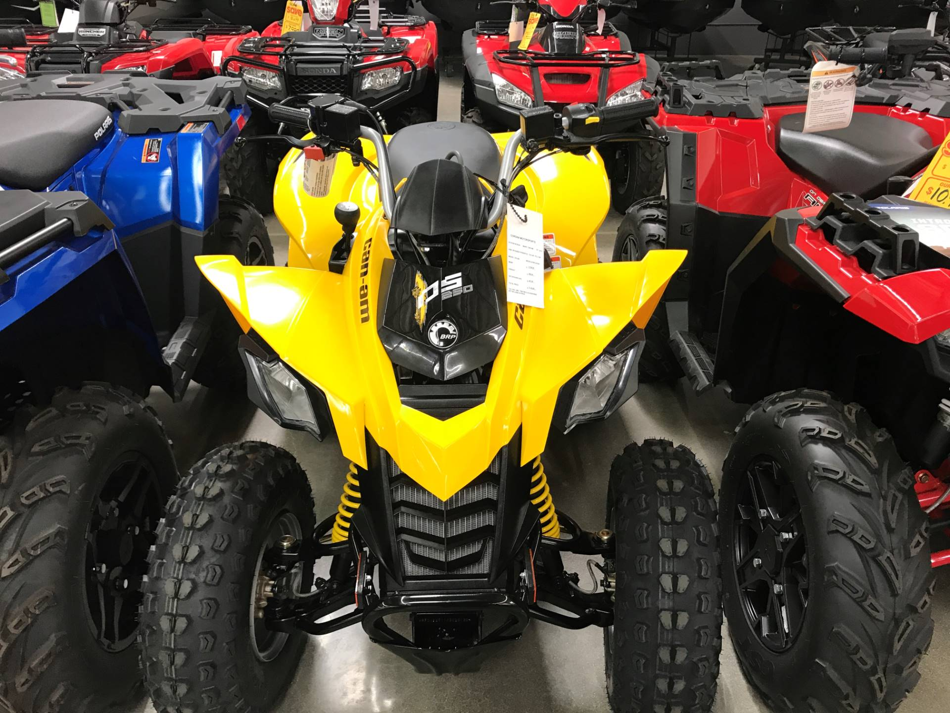 2019 Can-Am DS 250 in Corona, California - Photo 1