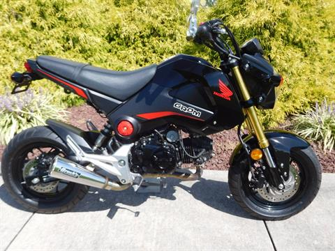 2015 Honda Grom® in Manheim, Pennsylvania