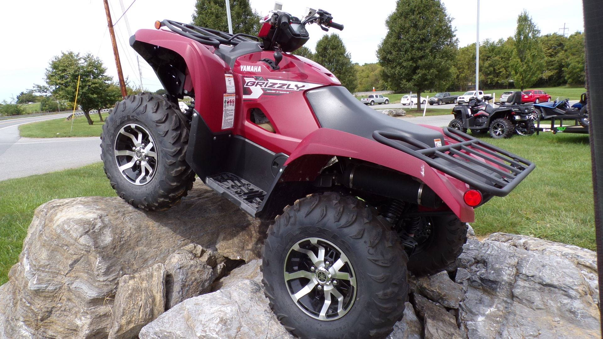 2019 Yamaha Grizzly EPS in Manheim, Pennsylvania - Photo 3