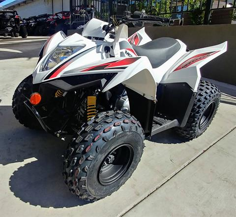 2019 Kymco MONGOOSE 90 S in Ontario, California - Photo 3