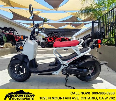 2019 Honda Ruckus in Ontario, California - Photo 1