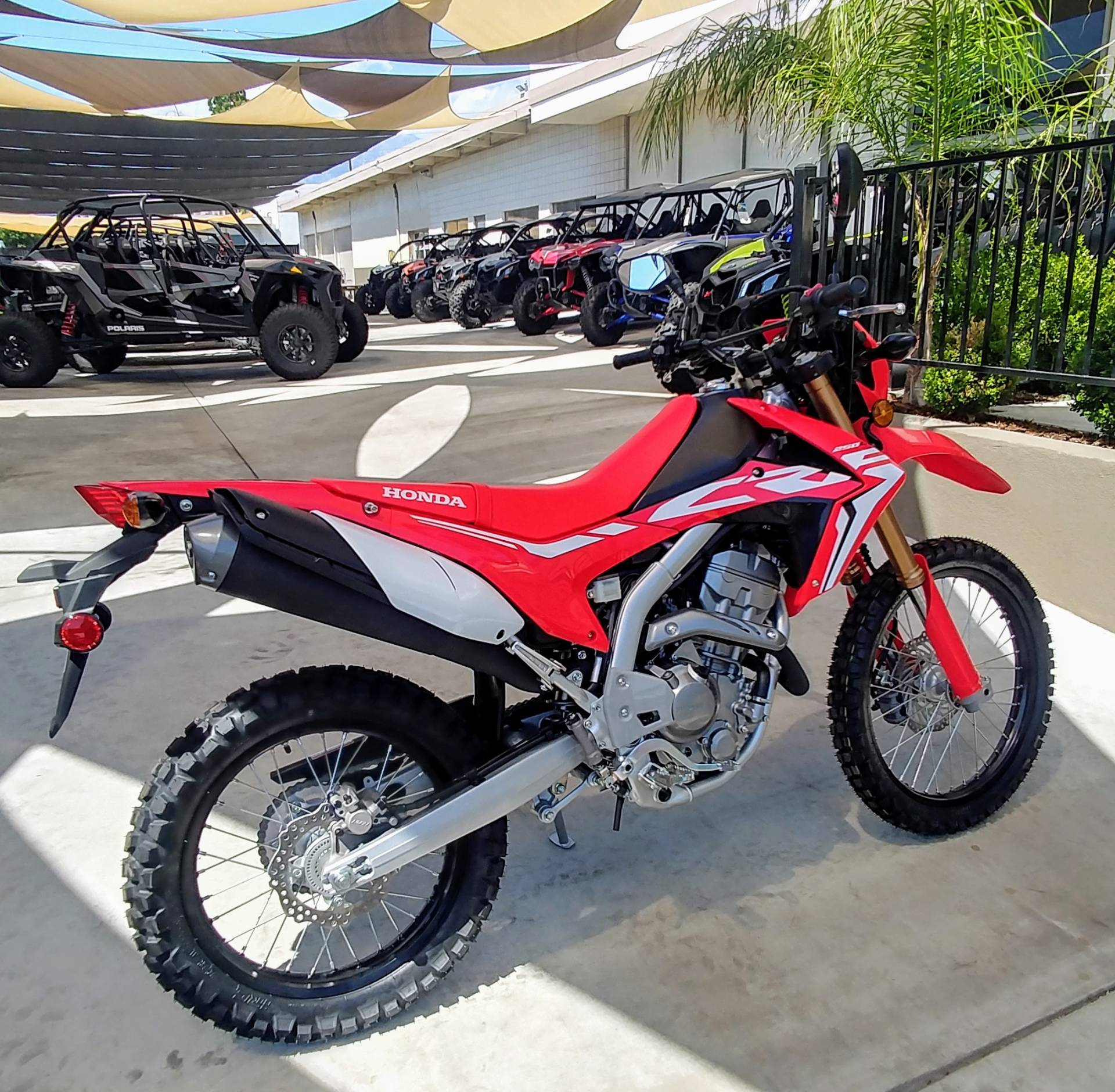 2019 Honda CRF250L in Ontario, California - Photo 7