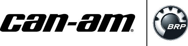 2019 Can-Am™ Maverick X3 X rs Turbo R 10