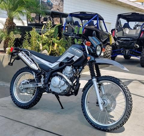 2021 Yamaha XT250 in Ontario, California - Photo 5
