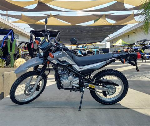 2021 Yamaha XT250 in Ontario, California - Photo 2