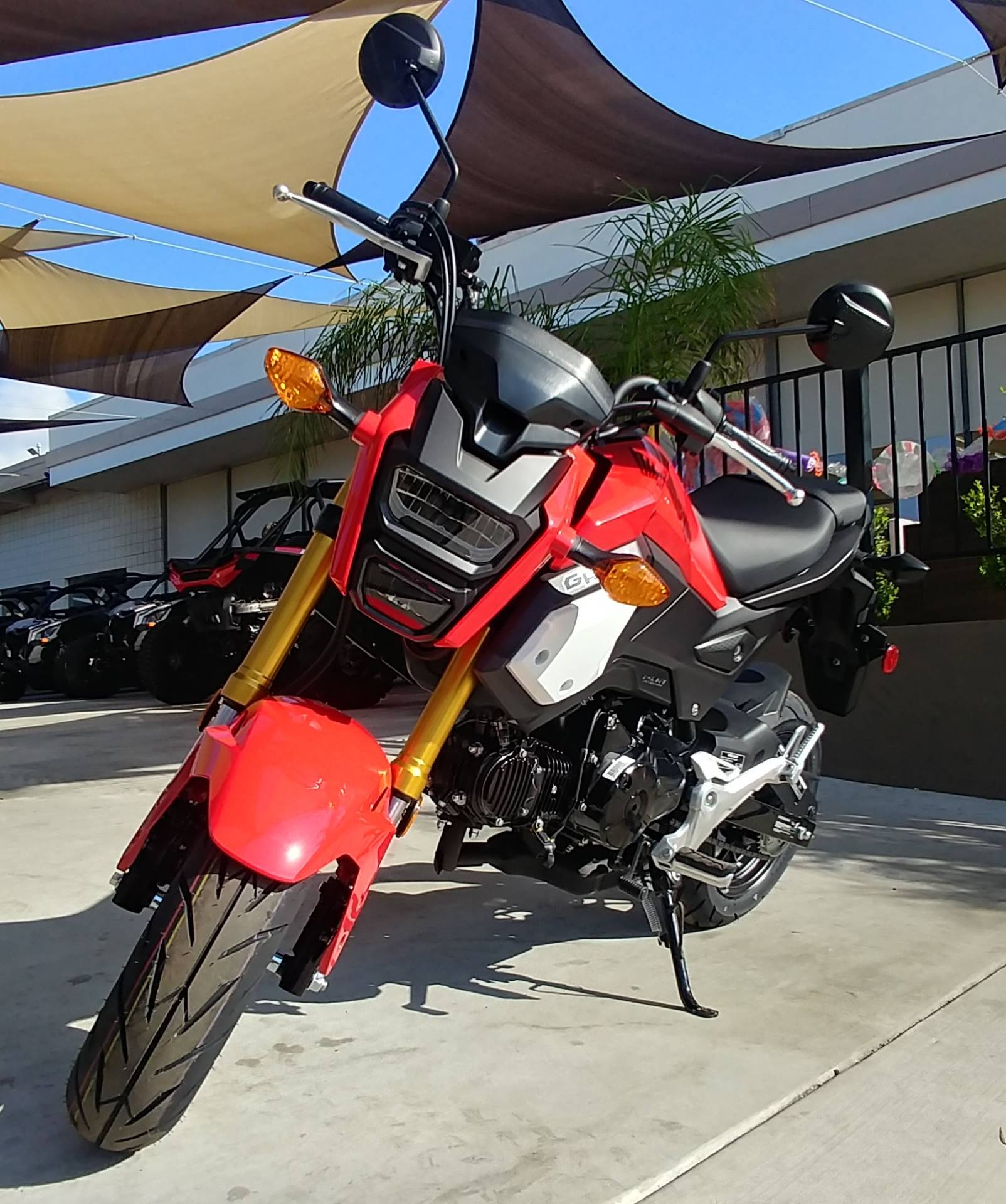 2019 Honda Grom in Ontario, California - Photo 3