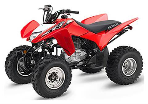 2019 Honda TRX250X in Ontario, California