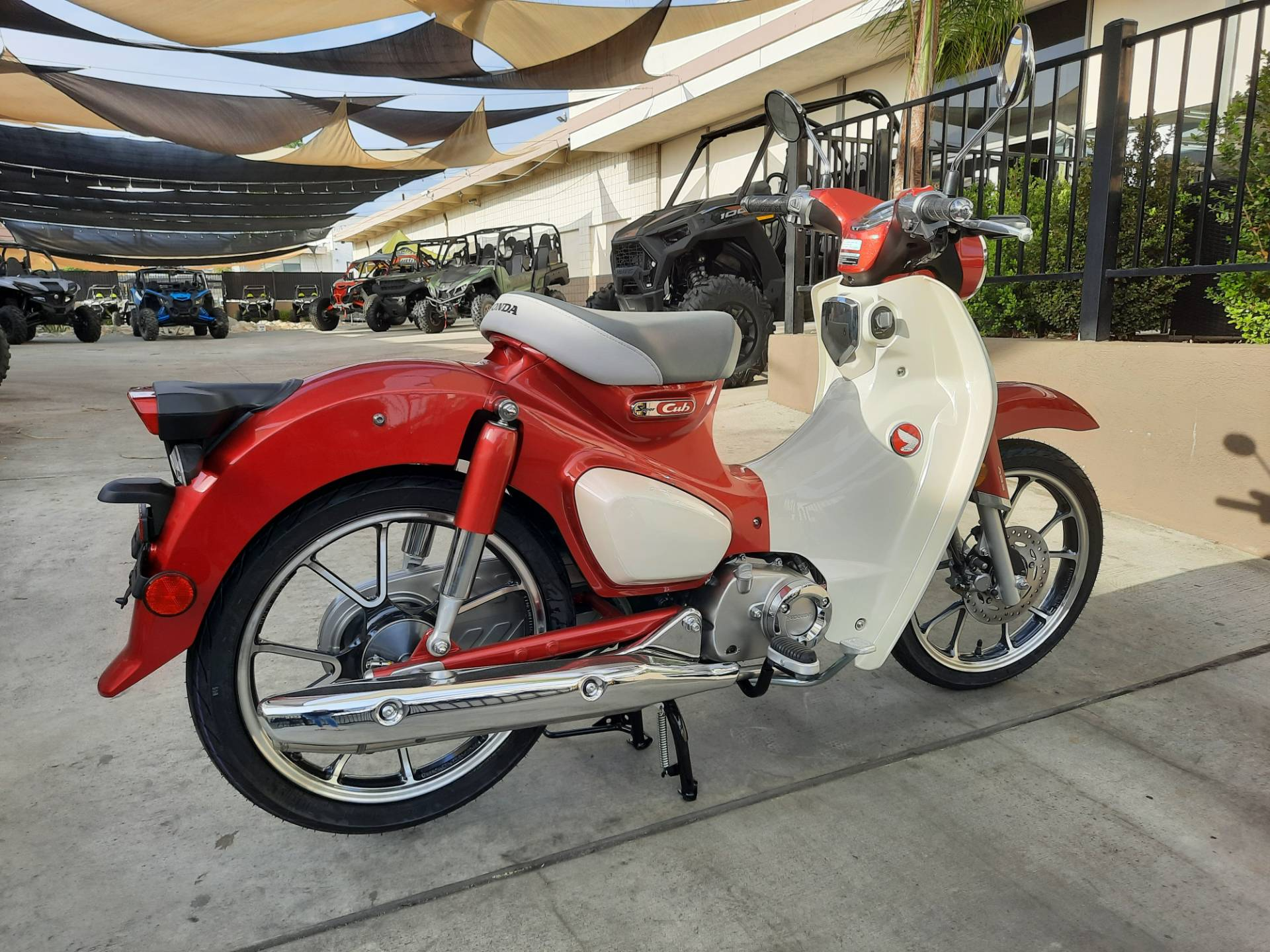 2021 Honda Super Cub C125 ABS in Ontario, California - Photo 6