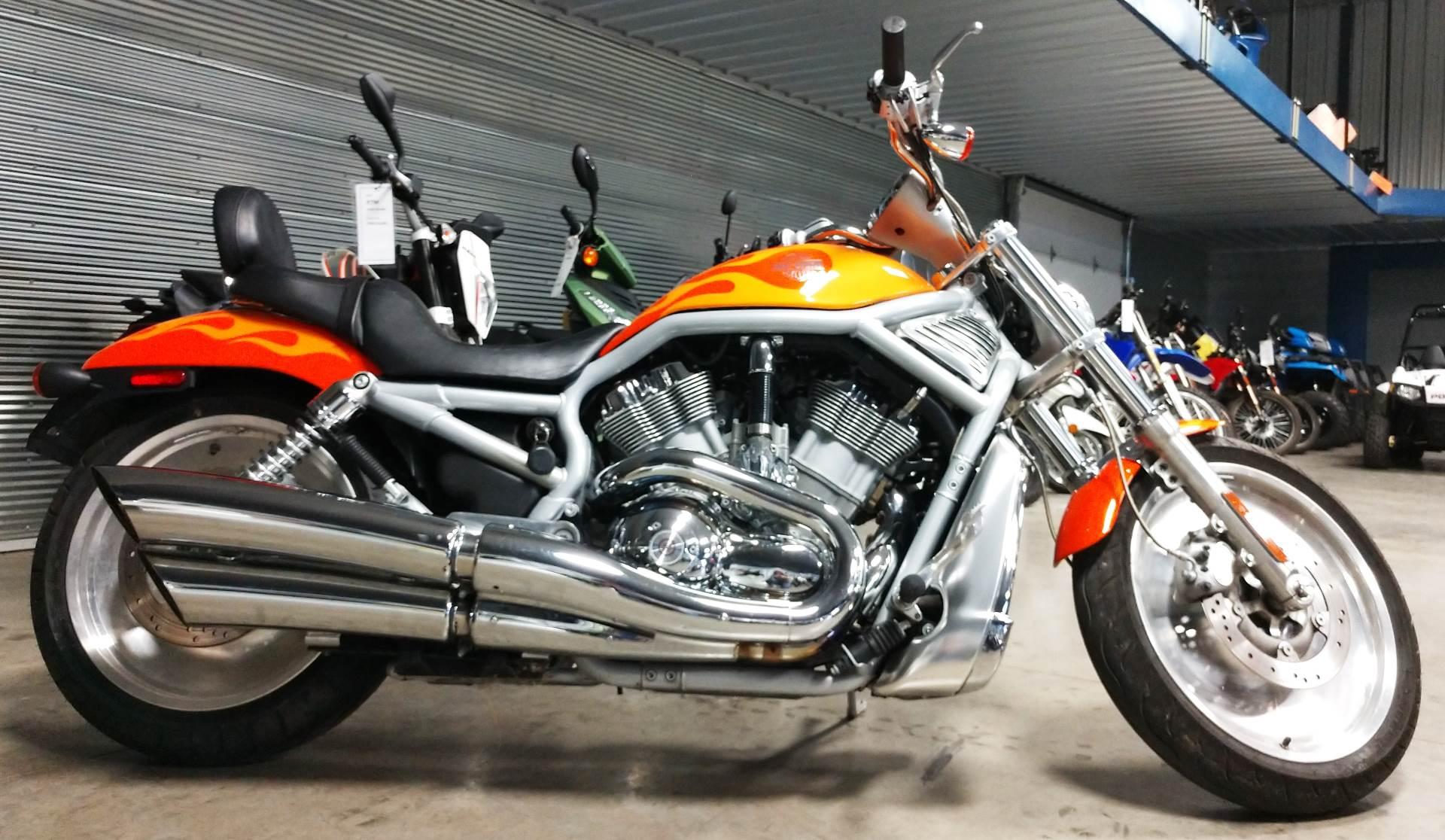2003 Harley-Davidson VRSCA  V-Rod 2