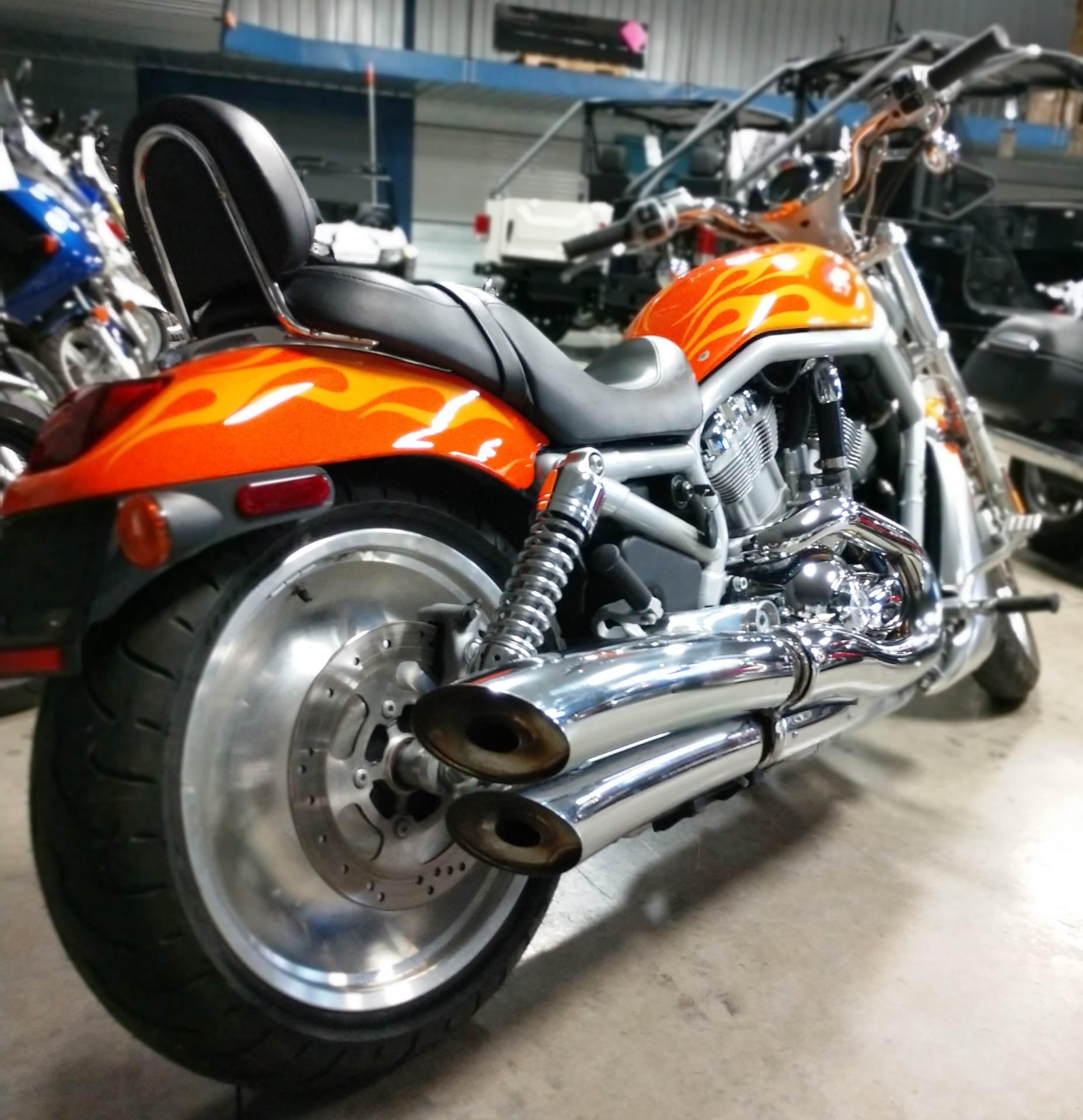 2003 Harley-Davidson VRSCA  V-Rod 6