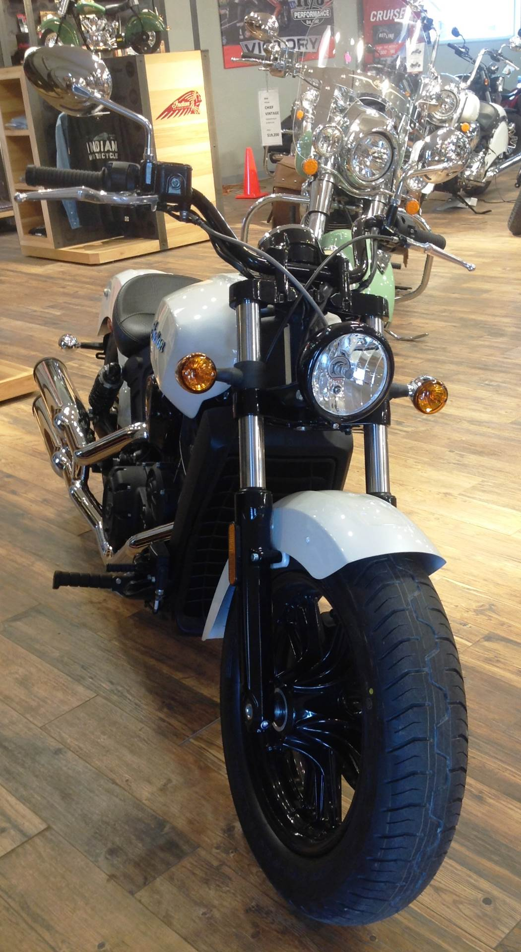 2017 Indian Scout Sixty 7