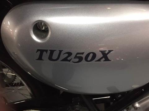 2013 Suzuki TU250X in Fairfield, Illinois