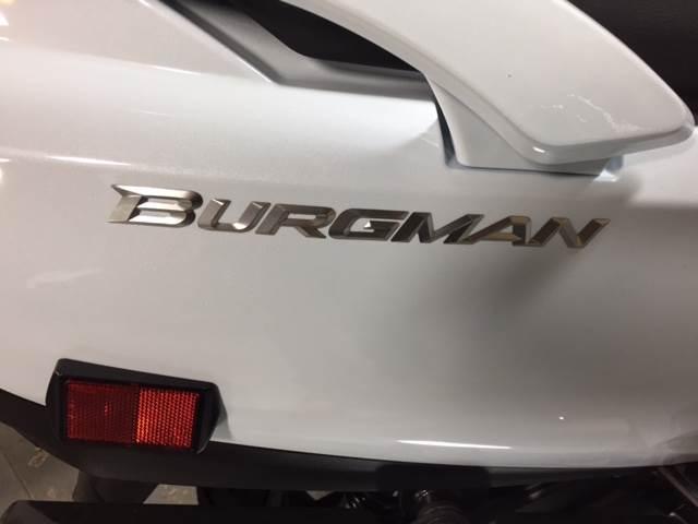 2013 Suzuki Burgman™ 650 ABS in Fairfield, Illinois