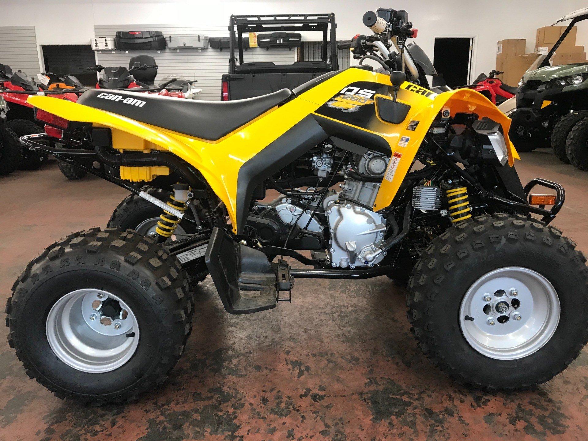 2018 Can-Am DS 250 ATVs Clovis New Mexico C023495R