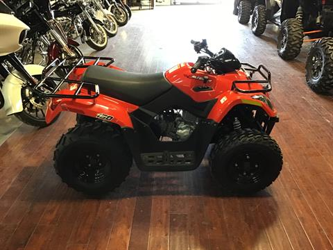 2019 Textron Off Road Alterra 150 in Roswell, New Mexico - Photo 2