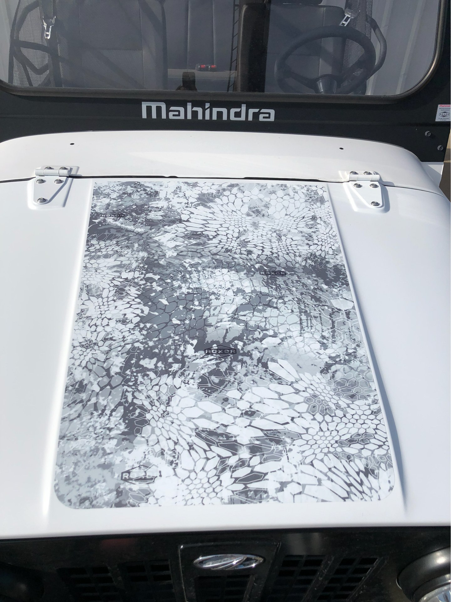 2019 Mahindra Automotive North America ROXOR Automatic Transmission Limited Edition in Amarillo, Texas - Photo 8