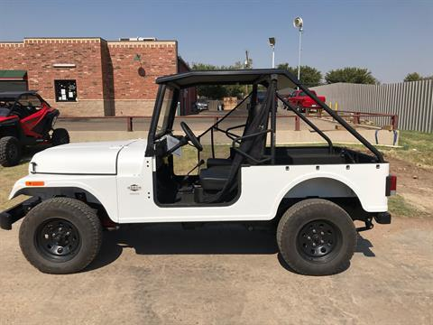 2020 Mahindra Automotive North America ROXOR Offroad in Amarillo, Texas - Photo 3