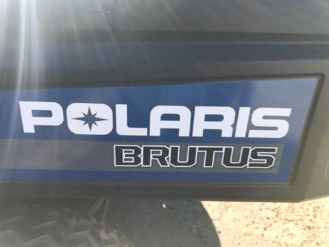 2013 Brutus BRUTUS™ HD in Clovis, New Mexico