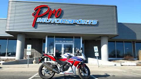 2015 Honda CBR®300R in Fond Du Lac, Wisconsin