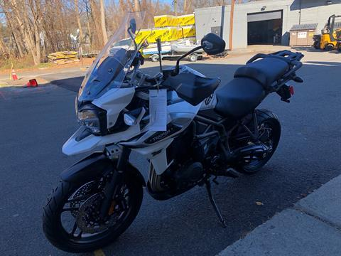 2019 Triumph Tiger 1200 XRt in Enfield, Connecticut - Photo 9