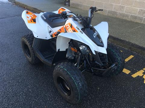 2019 Can-Am DS 70 in Enfield, Connecticut